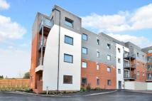 2 bed Flat to rent in Walnut Tree Close