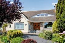 Detached house for sale in Whidborne Avenue, Torquay