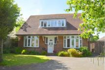 4 bed house in Hollybush Road...