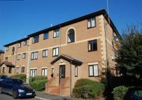 1 bedroom Flat to rent in Winston Close, Stone...