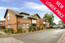 Maisonette in Clarendon, Cyncoed Place...