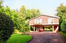 Detached property for sale in Cyncoed Road, Cyncoed...