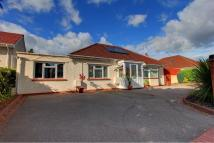 St Edeyrn's Road Detached Bungalow for sale
