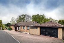 5 bedroom Detached house for sale in Cyncoed Place, Cyncoed...