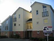 Rugby Studio flat