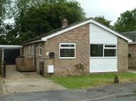 Detached Bungalow in Frere Corner, Roydon...