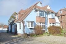 6 bed semi detached house in Hangleton Road, Hove, BN3