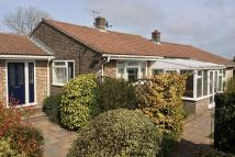 4 bed Detached Bungalow in Martinstown