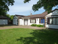 Detached Bungalow for sale in Colts Bay, Bognor Regis...