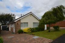 2 bedroom Detached Bungalow for sale in School Crescent, Lydney