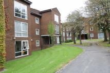 Spathfield Court Studio flat to rent