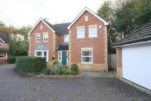 Mitchell Road Detached property to rent