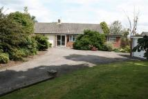 2 bed Detached Bungalow in Shaftesbury