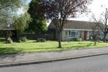 3 bedroom Semi-Detached Bungalow in Shaftesbury