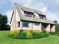 Detached home for sale in Ridgeleaze, Canonbie...