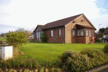3 bed Detached Bungalow for sale in Dale View, Laversdale...