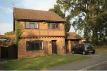 4 bedroom Detached house in Farnborough