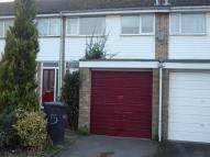 Maple Avenue Terraced property to rent