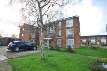 Hardwicke Place Flat to rent