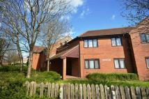 Flat to rent in Phillimore Place, Radlett