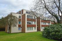 Flat to rent in Beechcroft Court...
