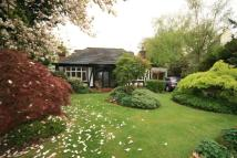 Bungalow for sale in Ringmer Place...