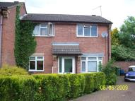 3 bed semi detached house to rent in Pine Close, Lutterworth...