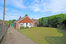 Detached Bungalow in Fairlawn Road, Tadley