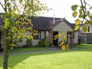 Terraced Bungalow to rent in Meadowlake Close...