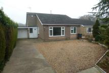 3 bed Detached Bungalow in Goldfinch Close...