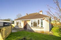 Detached Bungalow for sale in Bristol Road...