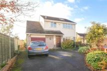 Detached property to rent in Alexandra Road...