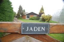 Jaden Detached Bungalow to rent