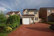 3 bed Detached property in Bute Drive...