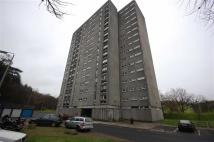 Clyde Court Flat to rent