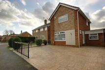 Link Detached House in Maple Drive, Beverley