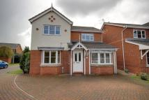 Detached property to rent in Rigby Close, Beverley