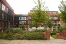 Avoca Apartment to rent