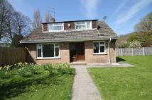 Chalet to rent in St Marys Road, Portishead