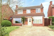 Detached house for sale in Birchmead Avenue, Pinner...
