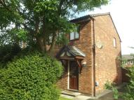 3 bed semi detached property to rent in Butterton Avenue