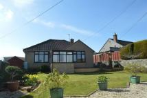 2 bed Detached Bungalow in Westwood Avenue...