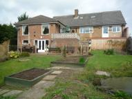 Bungalow for sale in Brooklands, Birkin Lane...