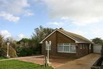 Detached Bungalow to rent in 3 bedroom Detached...