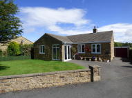 Detached Bungalow for sale in Brooklands, 44 Brentwood...