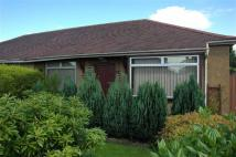 1 bed Semi-Detached Bungalow in Rosshall Place, Renfrew