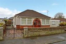 3 bed Detached Bungalow for sale in Cowdray Crescent, Renfrew