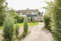 semi detached property to rent in Cromwell Avenue...