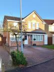 4 bed Detached property to rent in Torney Close...