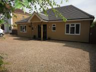 Detached Bungalow in Wingletye Lane...